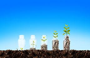 money growing on plants